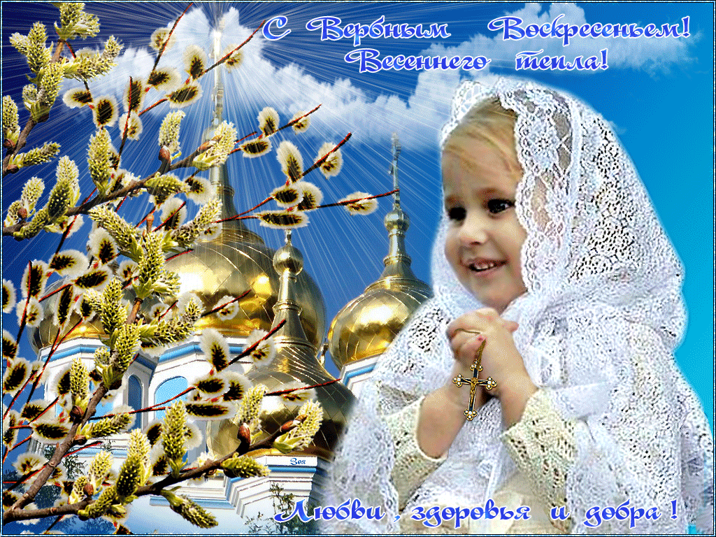 фото открыток с вербным воскресением отделом городу братск
